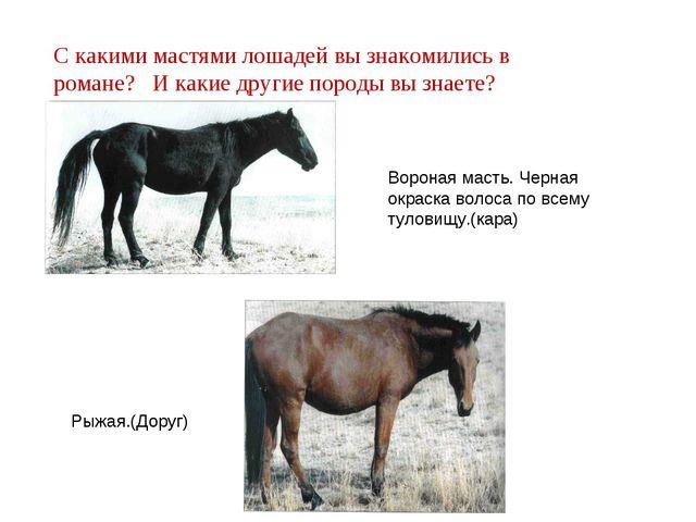 С какими мастями лошадей вы знакомились в романе? И какие другие породы вы зн...