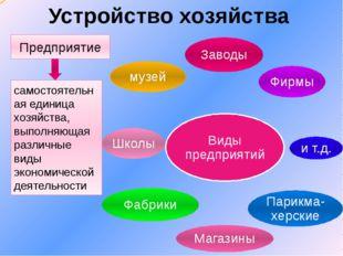 Устройство хозяйства Предприятие самостоятельная единица хозяйства, выполняющ