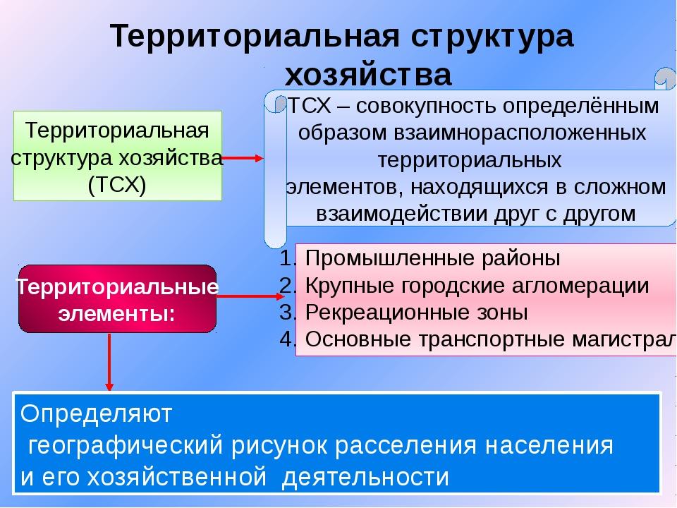 Территориальная структура хозяйства Территориальная структура хозяйства (ТСХ)...