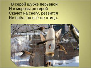 В серой шубке перьевой И в морозы он герой Скачет на снегу, резвится Не орёл