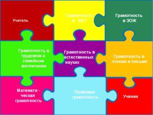 Ученик Правовая грамотность Математи - ческая грамотность Грамотность в труд