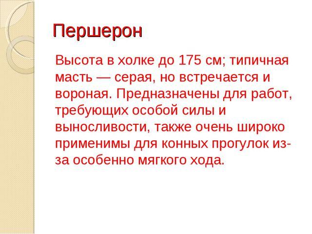 Першерон Высота в холке до 175 см; типичная масть — серая, но встречается и в...