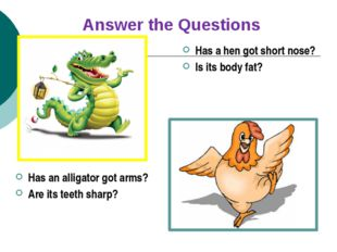 Has a hen got short nose? Is its body fat? Has an alligator got arms? Are its