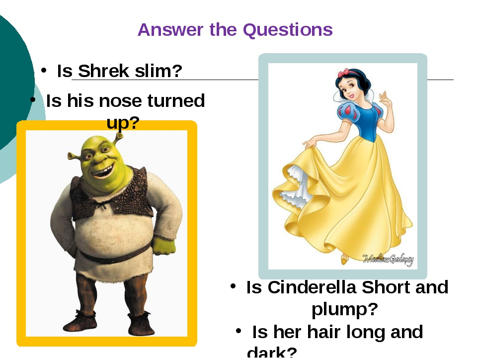 Is Shrek slim? Is Cinderella Short and plump? Is his nose turned up? Is her...