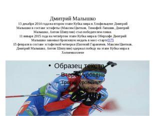 Дмитрий Малышко 13 декабря 2014 года на втором этапе Кубка мира в Хохфильцен