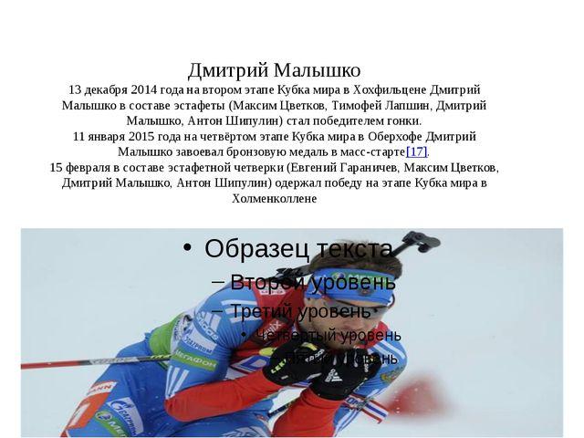 Дмитрий Малышко 13 декабря 2014 года на втором этапе Кубка мира в Хохфильцен...