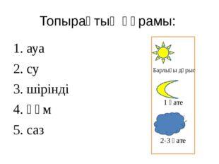 Топырақтың құрамы: 1. ауа 2. су 3. шірінді 4. құм 5. саз 1 қате Барлығы дұрыс