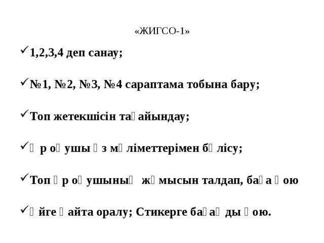 «ЖИГСО-1» 1,2,3,4 деп санау; №1, №2, №3, №4 сараптама тобына бару; Топ жетек...