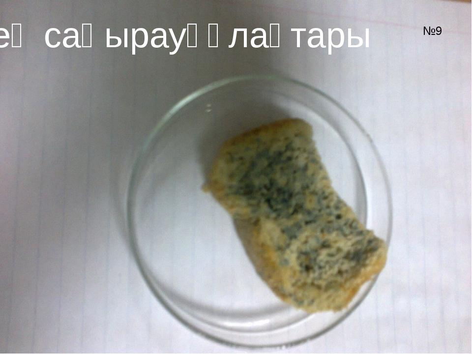 Зең саңырауқұлақтары №9