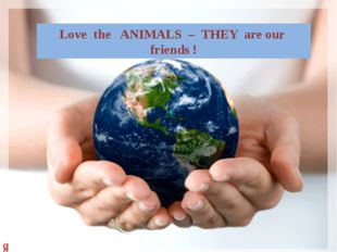 Love the ANIMALS – THEY are our friends !