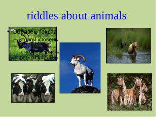 riddles about animals