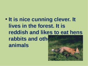 It is nice cunning clever. It lives in the forest. It is reddish and likes t