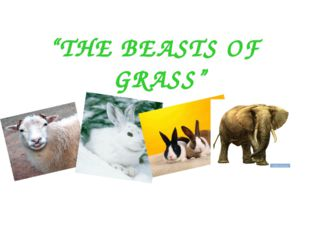 """""""THE BEASTS OF GRASS"""""""