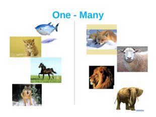 One - Many