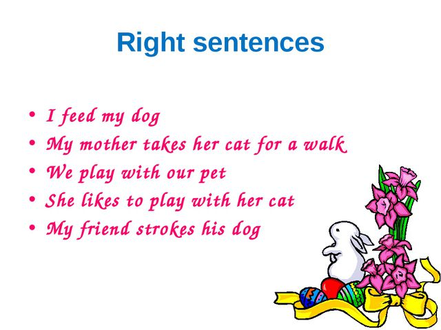 Right sentences I feed my dog My mother takes her cat for a walk We play with...