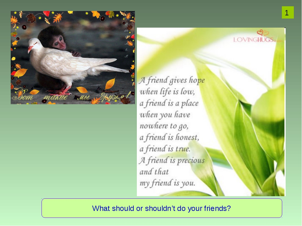What should or shouldn't do your friends? 1