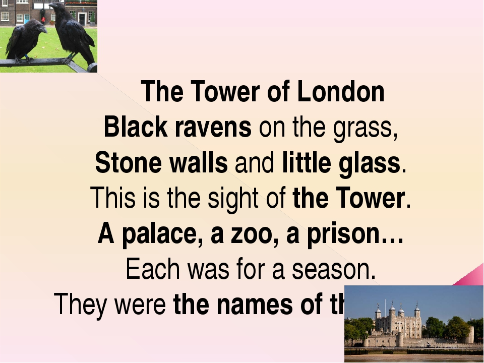 The Tower of London Black ravens on the grass, Stone walls and little glass....