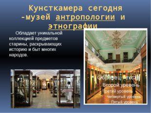 Кунсткамера сегодня -музейантропологиииэтнографии Обладает уникальной кол