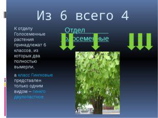 Из 6 всего 4 К отделу Голосеменные растения принадлежат 6 классов, из которых