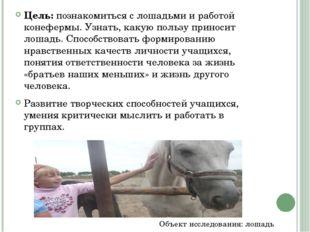 Цель: познакомиться с лошадьми и работой конефермы. Узнать, какую пользу прин