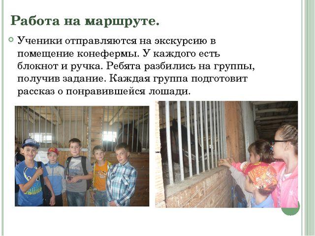 Работа на маршруте. Ученики отправляются на экскурсию в помещение конефермы....