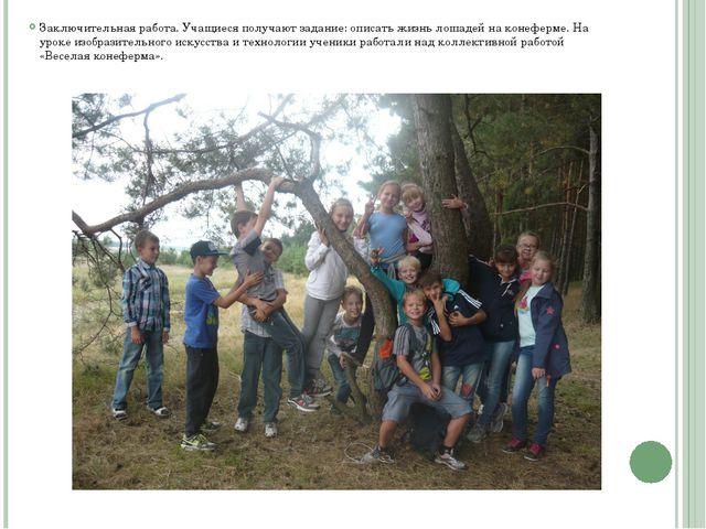 Заключительная работа. Учащиеся получают задание: описать жизнь лошадей на ко...
