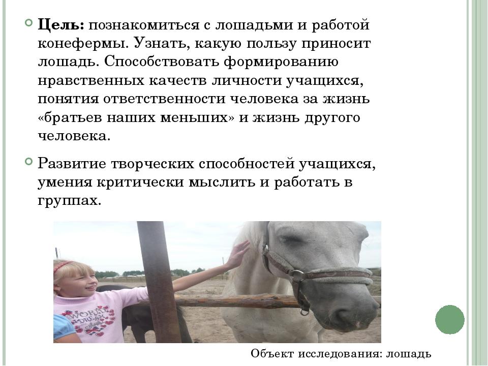 Цель: познакомиться с лошадьми и работой конефермы. Узнать, какую пользу прин...