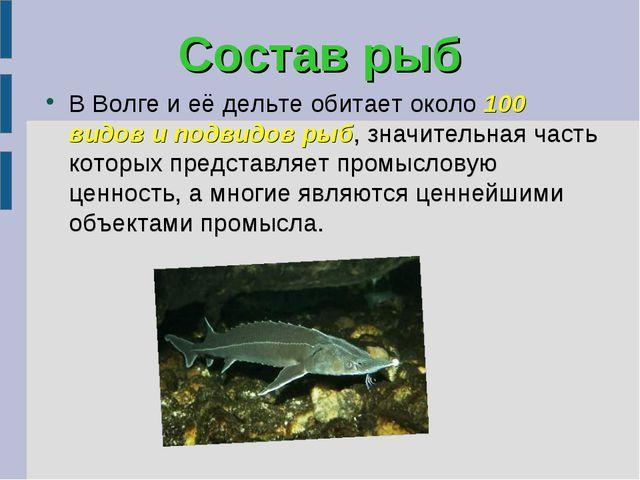 Состав рыб В Волге и её дельте обитает около 100 видов и подвидов рыб, значит...