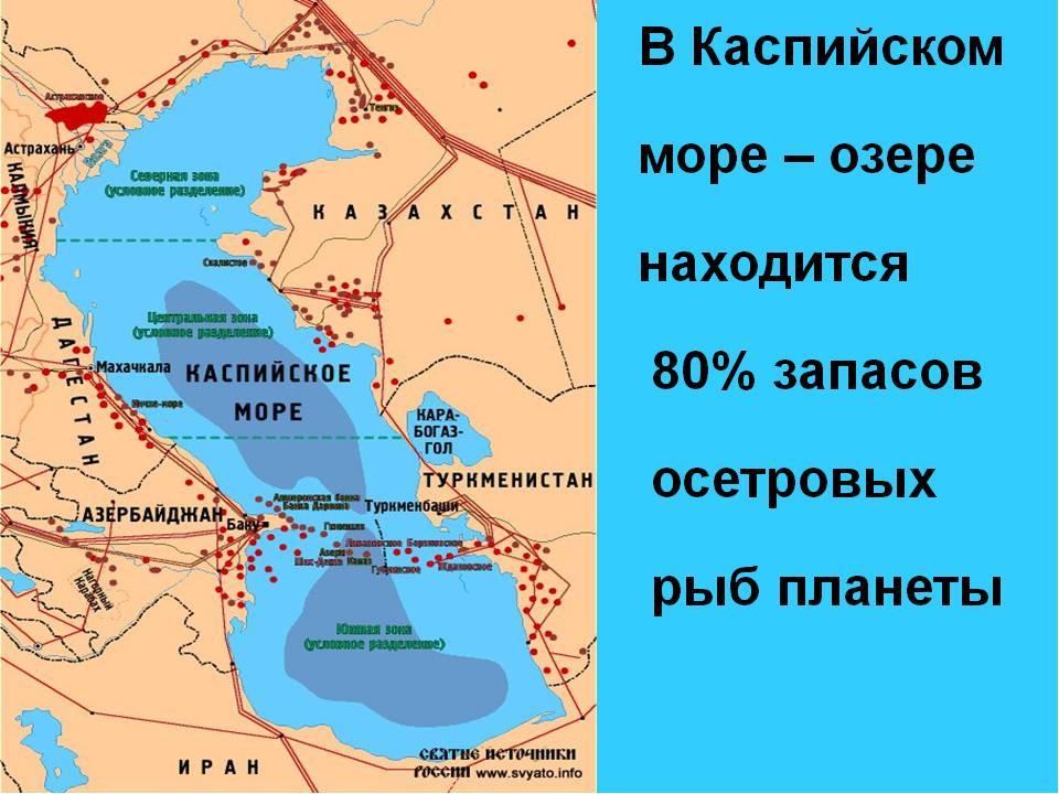 Каспийское море где находится по площади