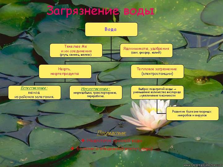 Описание: http://900igr.net/datas/ekologija/Zagrjaznenie-vody/0004-004-Zagrjaznenie-vody.jpg