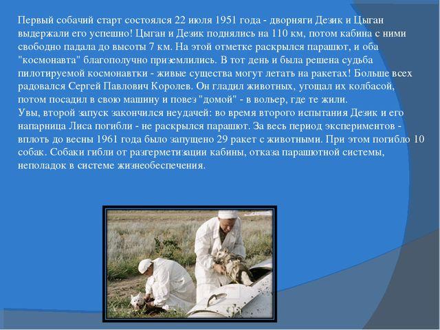 Первый собачий старт состоялся 22 июля 1951 года - дворняги Дезик и Цыган выд...