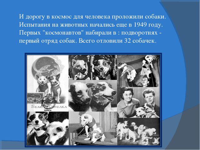 И дорогу в космос для человека проложили собаки. Испытания на животных начали...