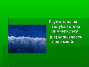 * Изумительная голубая стена зимнего леса (не) колыхалась подо мной.