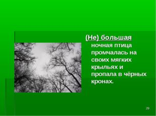 * (Не) большая ночная птица промчалась на своих мягких крыльях и пропала в чё