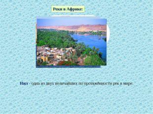 Реки в Африке: Нил - одна из двух величайших по протяжённости рек в мире.