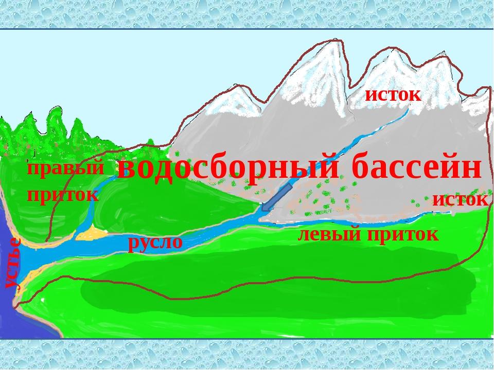 исток исток левый приток правый приток устье русло водосборный бассейн