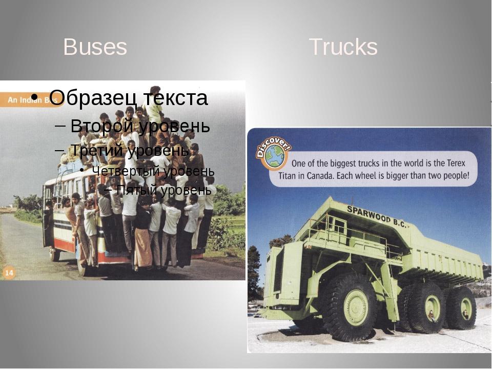 Buses Trucks