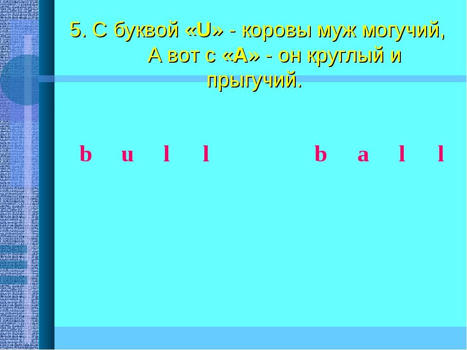 5. С буквой «U» - коровы муж могучий,  А вот с «А» - он круглый и прыгу...