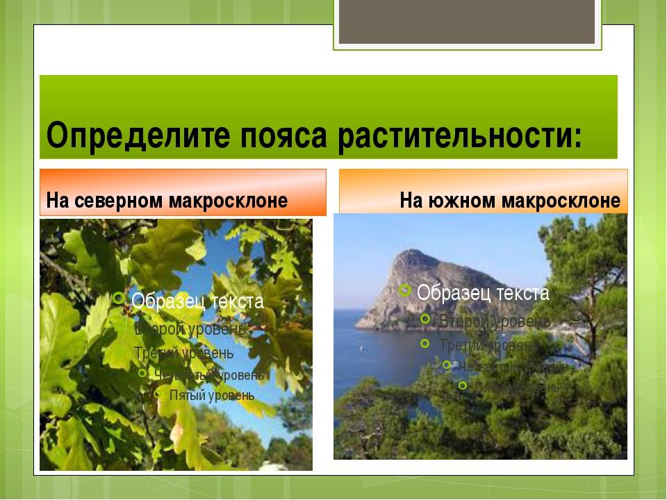 Определите пояса растительности: На северном макросклоне На южном макросклоне