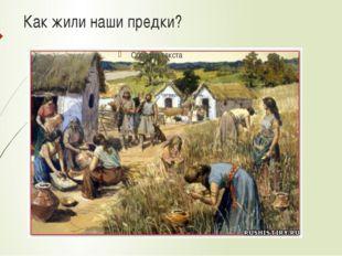 Как жили наши предки?