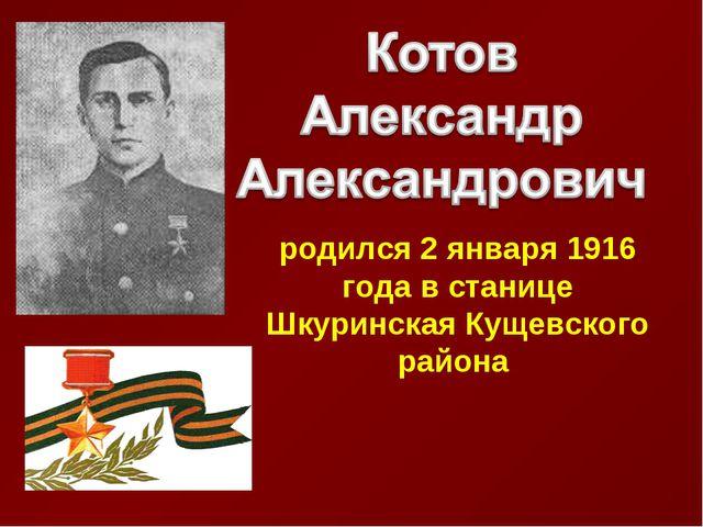 родился 2 января 1916 года в станице Шкуринская Кущевского района