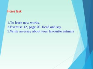 Home task To learn new words. Exercise 12, page 70. Read and say. Write an es