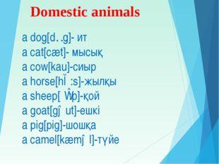 Domestic animals a dog[dɔg]- ит a cat[cæt]- мысық a cow[kau]-сиыр a horse[hɔ: