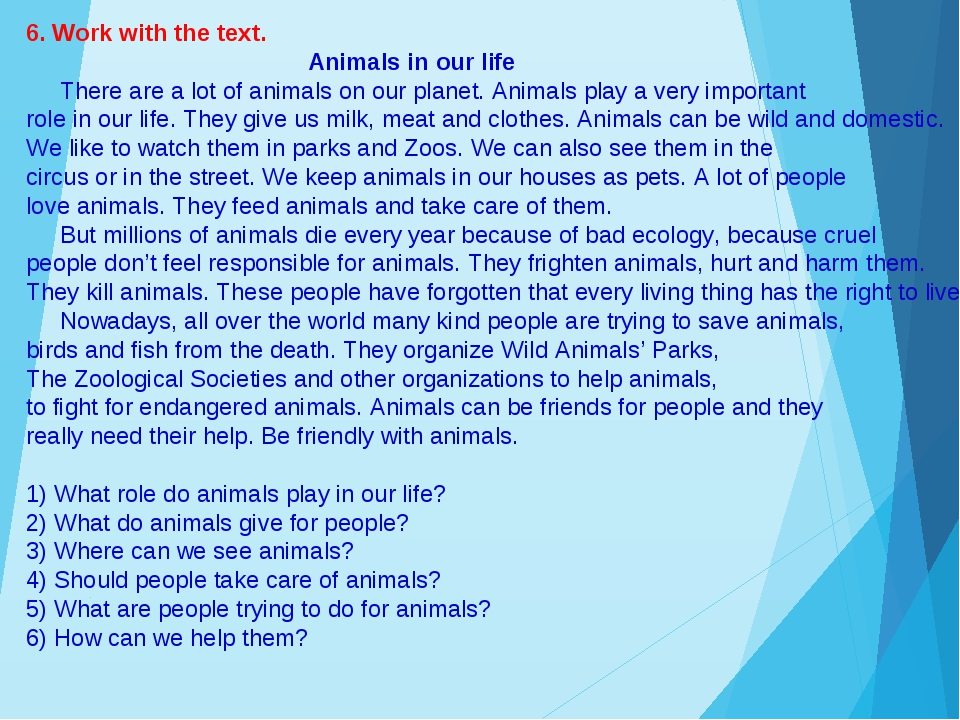 6. Work with the text. Animals in our life There are a lot of animals on our...