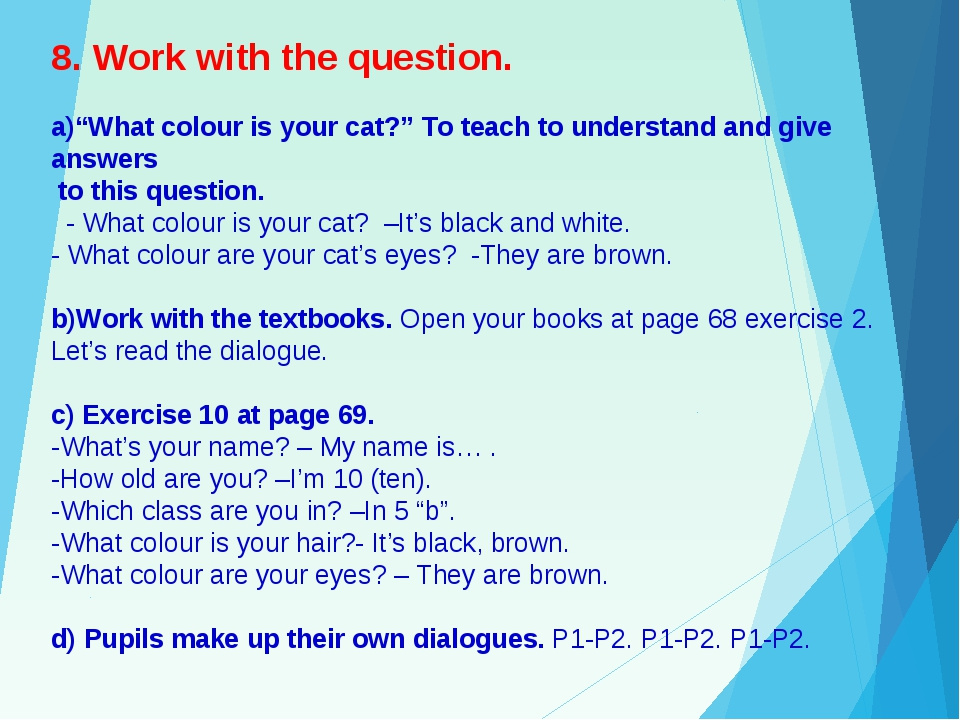 """8. Work with the question.  a)""""What colour is your cat?"""" To teach to underst..."""