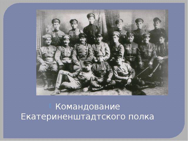 Командование Екатериненштадтского полка