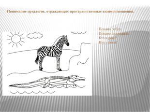 Понимание предлогов, отражающих пространственные взаимоотношения. Покажи зебр