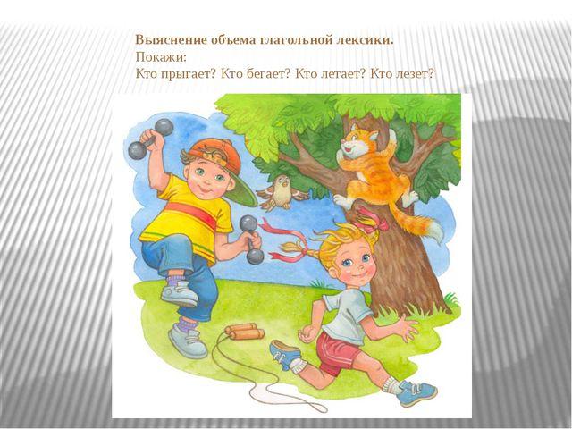 Выяснение объема глагольной лексики. Покажи: Кто прыгает? Кто бегает? Кто лет...