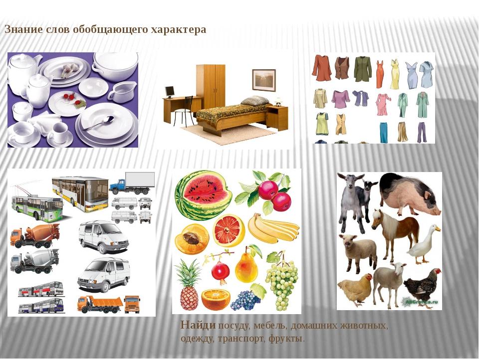 Знание слов обобщающего характера Найди посуду, мебель, домашних животных, од...
