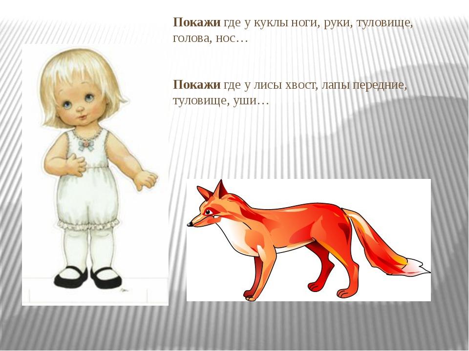 Покажи где у куклы ноги, руки, туловище, голова, нос… Покажи где у лисы хвост...